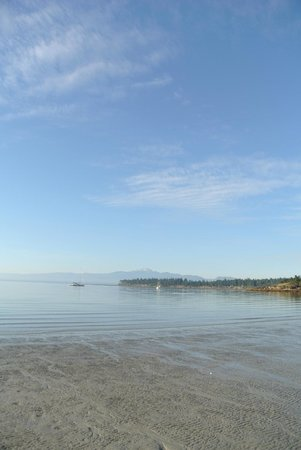 Tribune Bay Campsite: beach