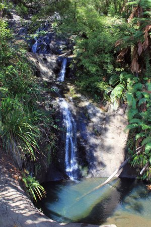 Fairy Falls: Falls down to a clear pool