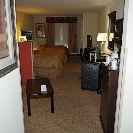 Comfort Suites Cullman: room overview 1