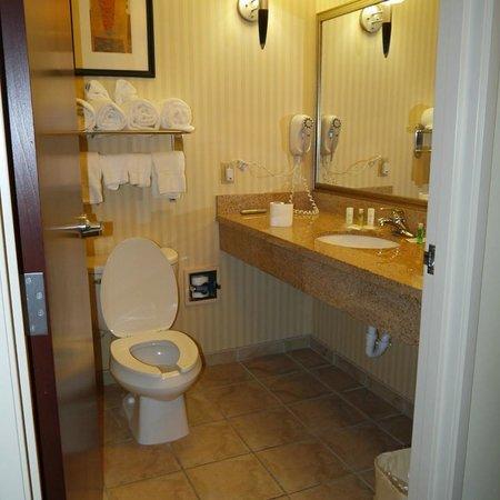 Comfort Suites Cullman: bathroom