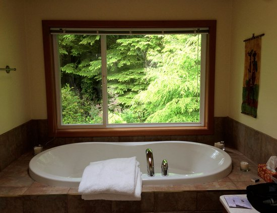 Blue Bear Bed and Breakfast: View from bathroom