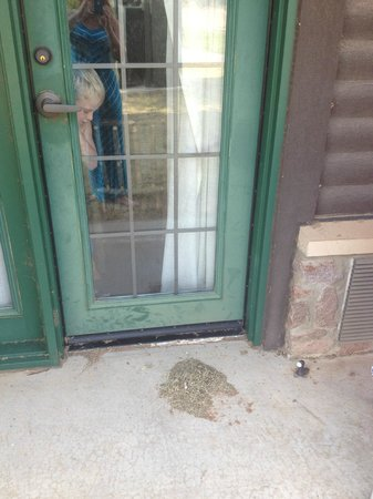 Quartz Mountain Resort Arts & Conference Center : Patio door - a pile of grass clippings and cigarette butts, with hornet nests and cobwebs.