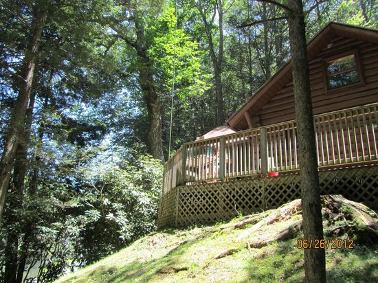Rafters picture of seneca state forest marlinton for Seneca lake ohio cabins