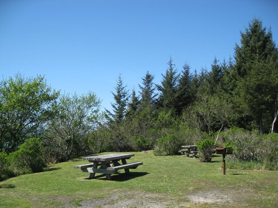Picnic tables, High Bluff Overlook
