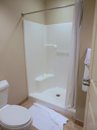Chautauqua Suites, Meeting & Expo Center: bathroom, no tub