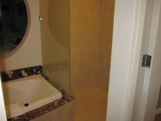 Secrets Aura Cozumel: bathroom with exposing hole