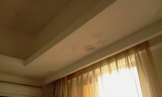 Hotel Ritz Victoria Garden : humidade
