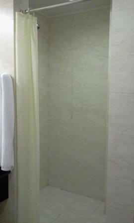 Hotel Ritz Victoria Garden: wc