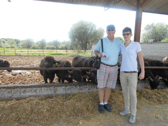 La fattoria del casaro: Friends on the Restaurant Farm