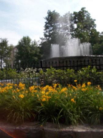 Reutter Park