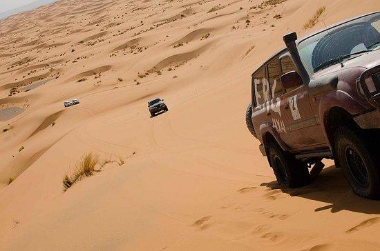 Ali & Sara's Desert Palace: Jeep ride