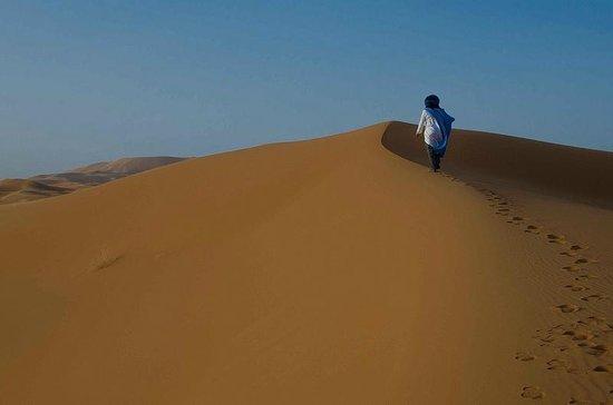 Ali & Sara's Desert Palace: Ali in the dunes