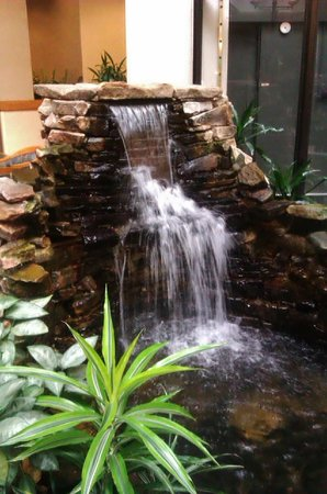 Embassy Suites by Hilton Greenville Golf Resort & Conference Center: Waterfall in the atrium with real fishies.