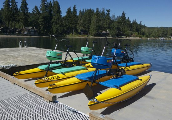 Alderbrook Resort & Spa: A new kind of paddle boat, with room for medium sized dogs