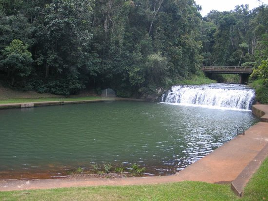 "Malanda Falls Caravan Park: The ""swimming pool"""