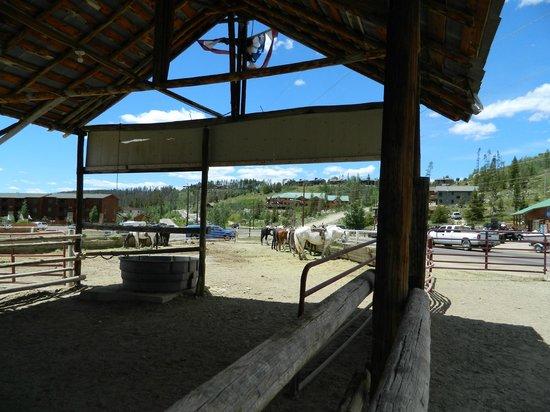 Sombrero Ranch: corral