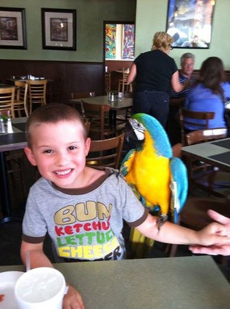 Chuck's Last Stop : Peaches the Parrot