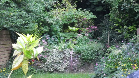299 London Road : So much beauty in the gardens