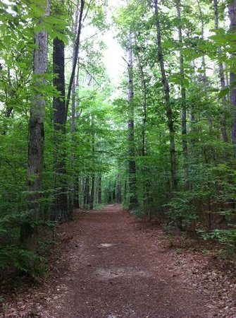 Wall Doxey State Park: nature trail