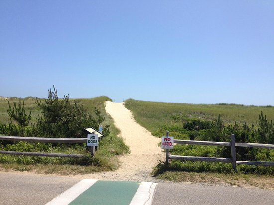 South Beach: numerous paths for easy access from car