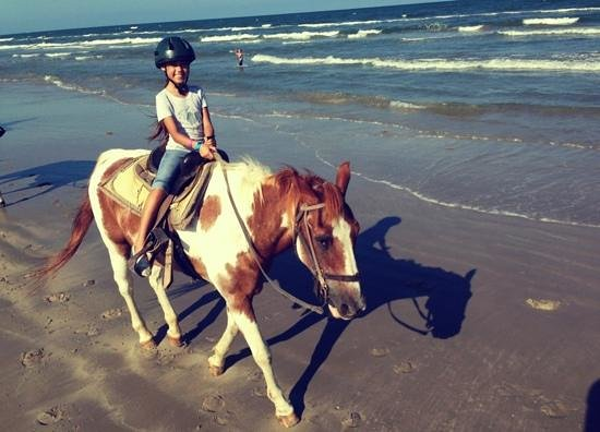 Horses On The Beach: Corpus Christi : Merrill is the sweetest horse ever! I will sure ride you again...