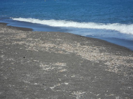 Perissa Beach: Black sand!