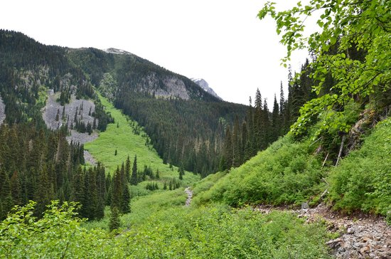 Joffre Lakes Provincial Park : On the way to middle lake