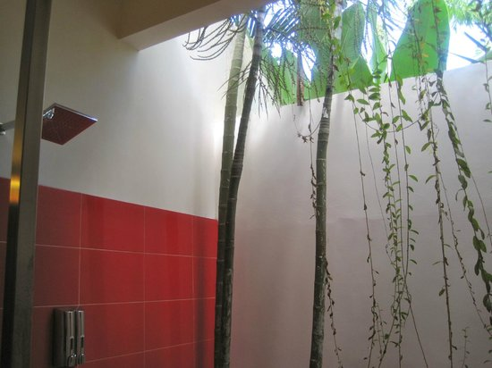 Bali Ginger Suites & Villa: outdoor shower