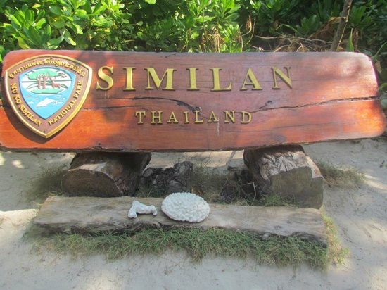Scuba Cat Diving - Soi Watanna Shop and Classrooms : Similan Islands - Thailand