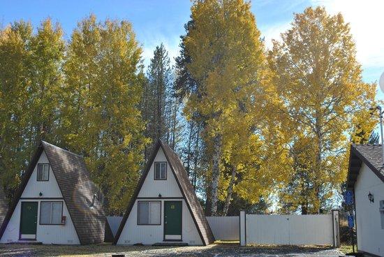 The Aspen Inn: A-Frame Cabins