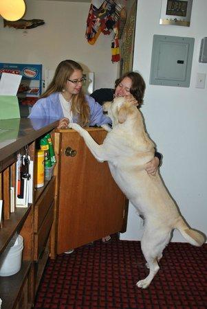The Aspen Inn: Obie greets visitors