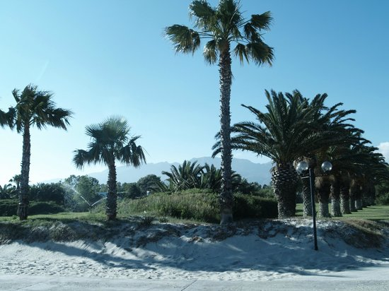 Caravia Beach Hotel: widok z ogrodu hotelowego