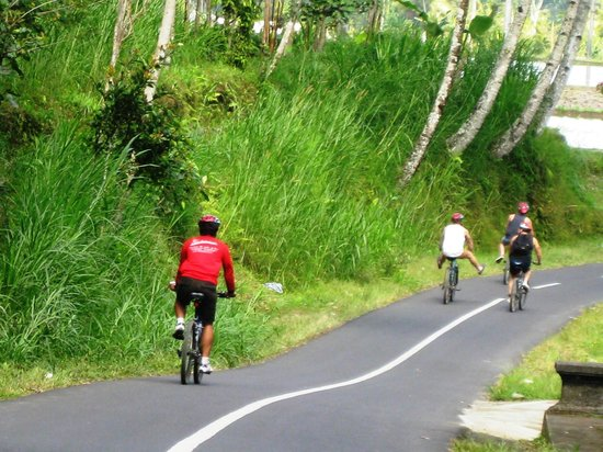 Bali Exotic Adventure - Private Tours: Downhill Cycling