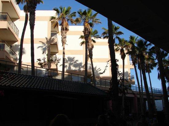 Apartamentos Stella Jandia : Vue du bar placé en face de la salle de restaurant