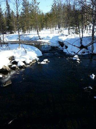 Lapland Safaris: scenic winter trail in yllas lapland