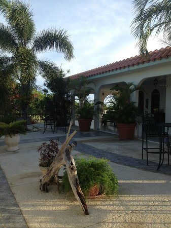 Villa Quiles: Edith's top floor outdoor space, overlooking Rincon