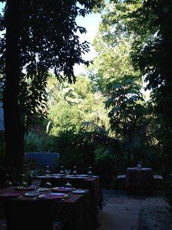 La Tienda: ресторанчик утопает в зелени