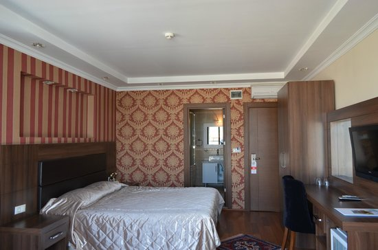 The Istanbul Hotel: SUIT ROOM