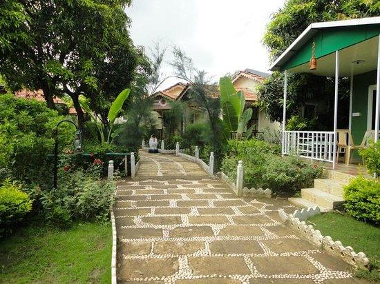 saavaj resort  sasan gir  hotel reviews  photos  rate comparison tripadvisor