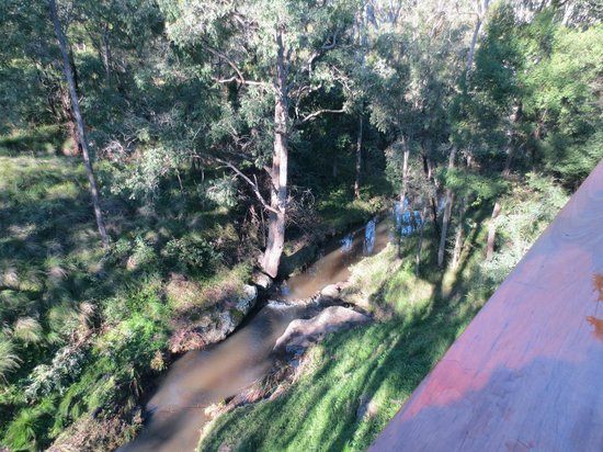 Cedars Mount View: View of creek from the verandah
