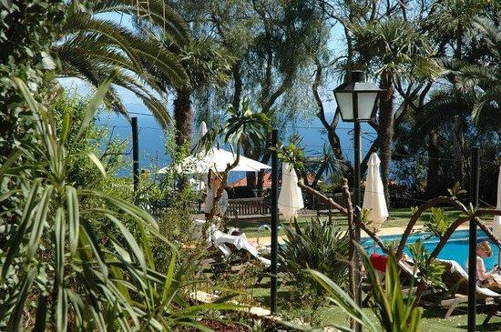 Quinta da Bela Vista : Ocreanview pool
