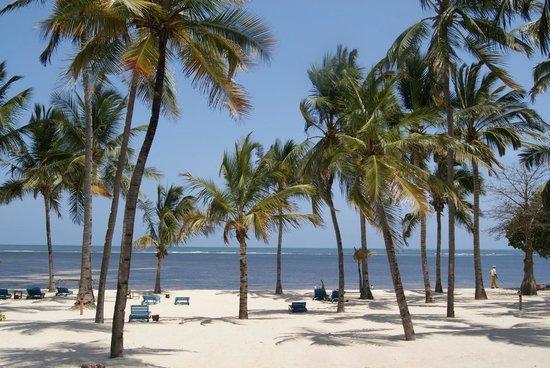 Tamani Jua Tao Resort: Beach