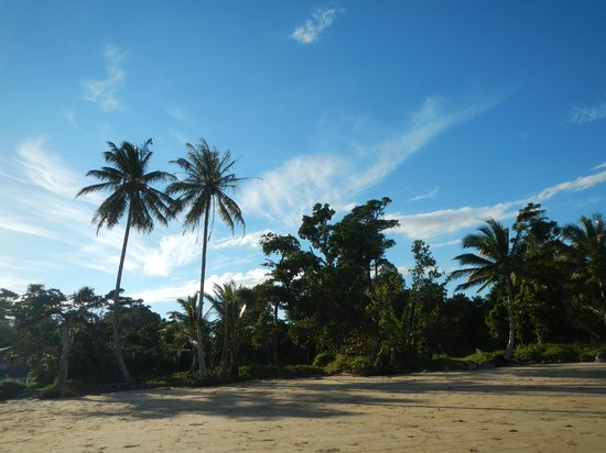 Eco Village Resort Mission Beach : Sandy beach, 1 min walk from Eco Village