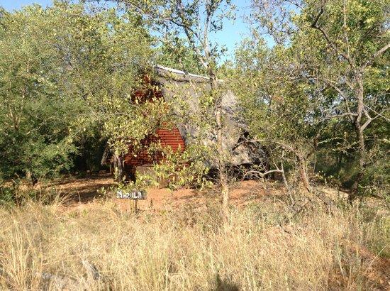 Tsakane Safari Camp : Camp with hut in background