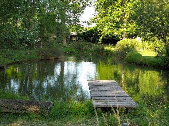 Manoir des Sources : Natur Pool auf dem Hotel Gelände