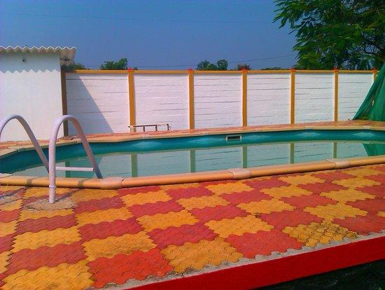 Ghanvatkar Bunglow at Zirad: Pool