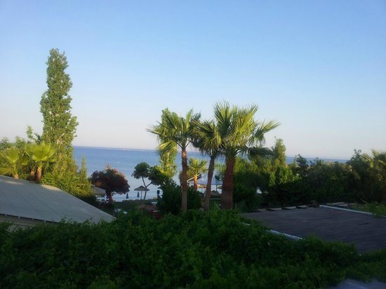 Andreas & Melani Beach Hotel: Blick vom Balkon
