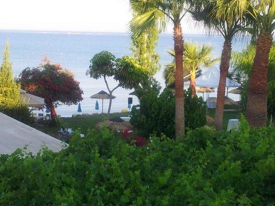 Andreas & Melani Beach Hotel: Sicht vom Balkon - schön