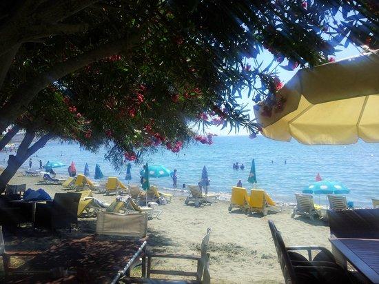 Andreas & Melani Beach Hotel: Blick vom Restaurant Bereich aufs Meer