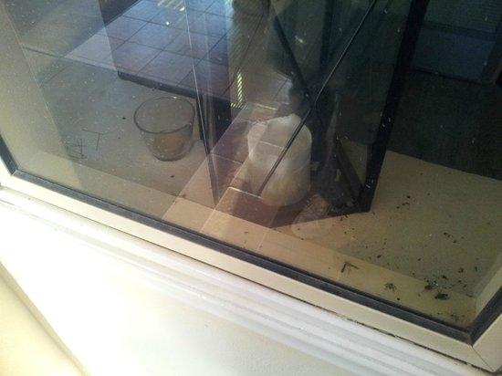 Andreas & Melani Beach Hotel: Dekofenster beim Treppenabgang von den Zimmern - dreckig, Fliegenleichen, wird nie geputzt
